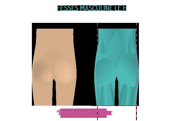fesses-forme-masculine-pas-de-hanche